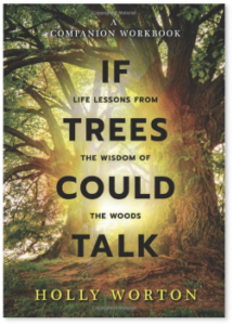 If Trees Could Talk workbook cover